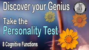 8 cognitive functions personality test - Personality Hacker