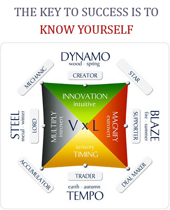 wealth dynamics profile personality typing tool